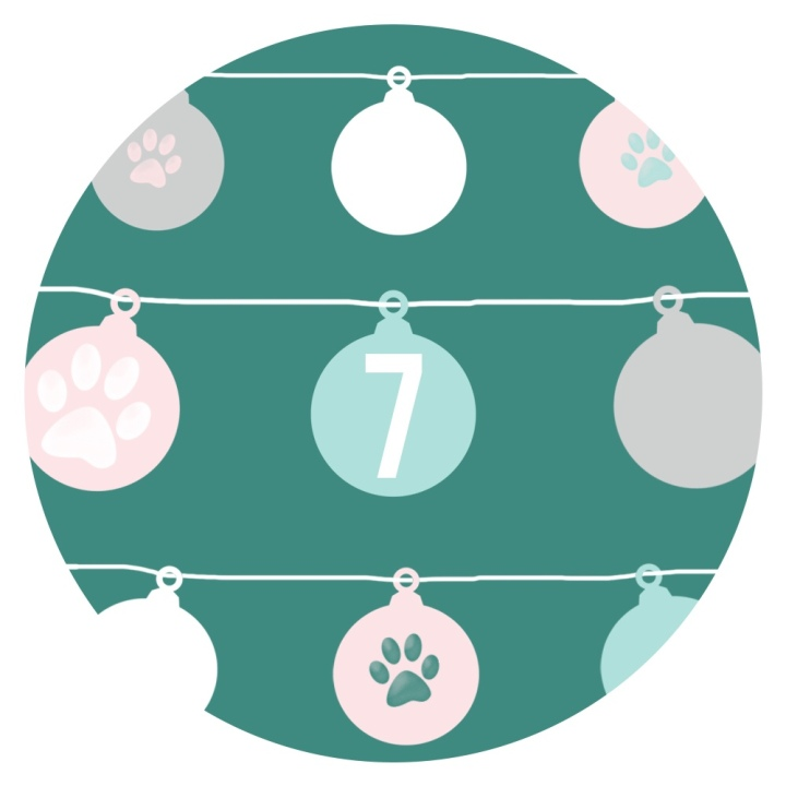 12 Days of Catmas – Day7